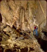 natural bridge caverns tours and attraction