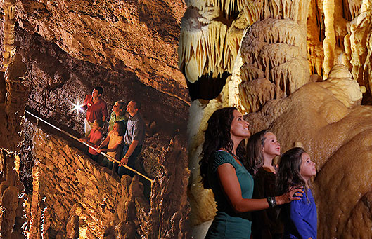 Families in the Caverns