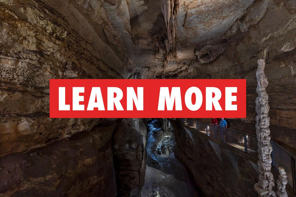 Learn_More_Purgatory_Creek_1200x800