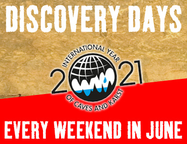 Click For Discovery Days Information